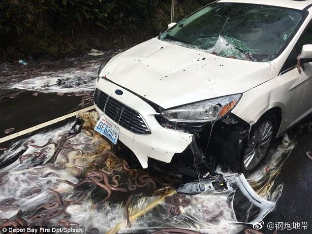 一个粗心大意的司机,使一条公路都变得湿滑。