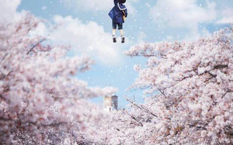 高中美术老师打扫了一下飘落的樱花