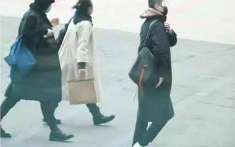 王菲与小鲜肉再爆同框照,2个月4次被拍,被传与谢霆锋已分手?