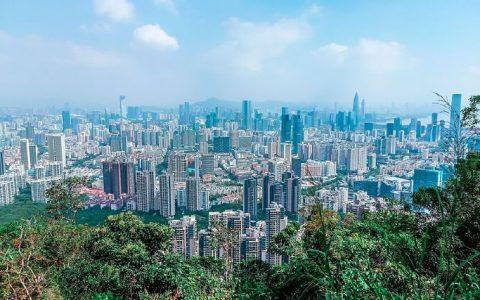 留在深圳终究只是一场梦